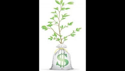 Learn to make your money grow