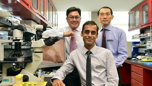 S'pore team may have cure for heart disorder