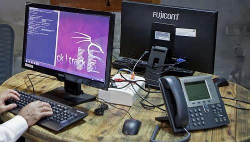 Internet, digital sectors lead in new firms