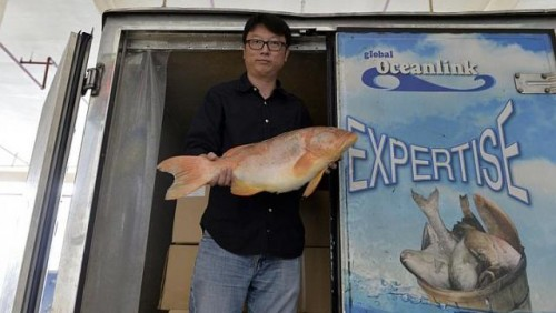 Sustainable seafood is no fishy business