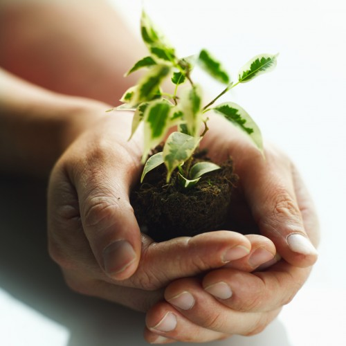Grow better leaders