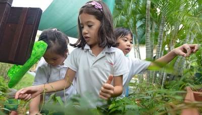 Pre-school wins award for green efforts